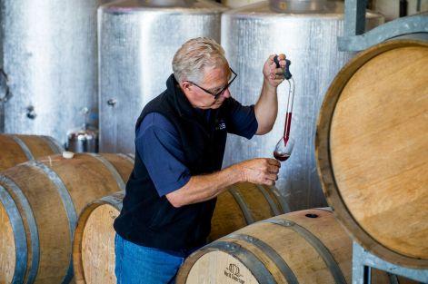 Vineyard 28 mark in Winery