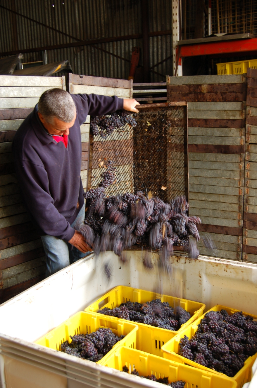 Brian Freeman emptying drying racks