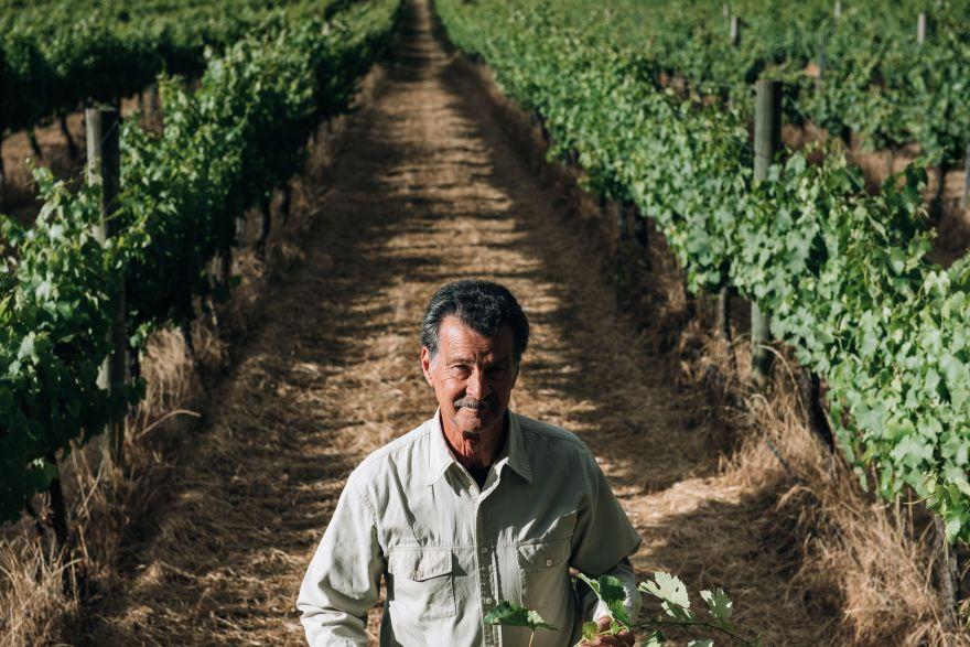 Cape Grace owner in vineyard