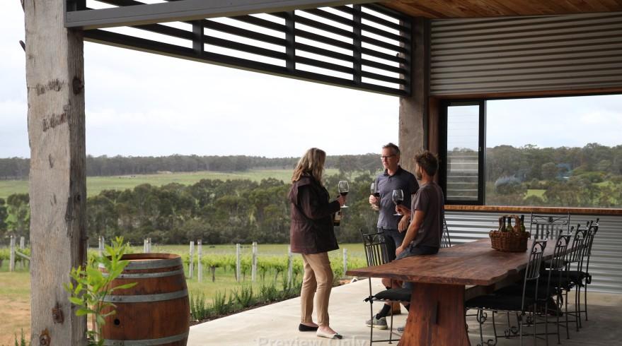 Victory Point vineyard