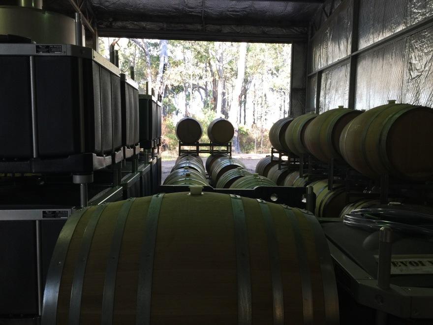 winery barrel shot