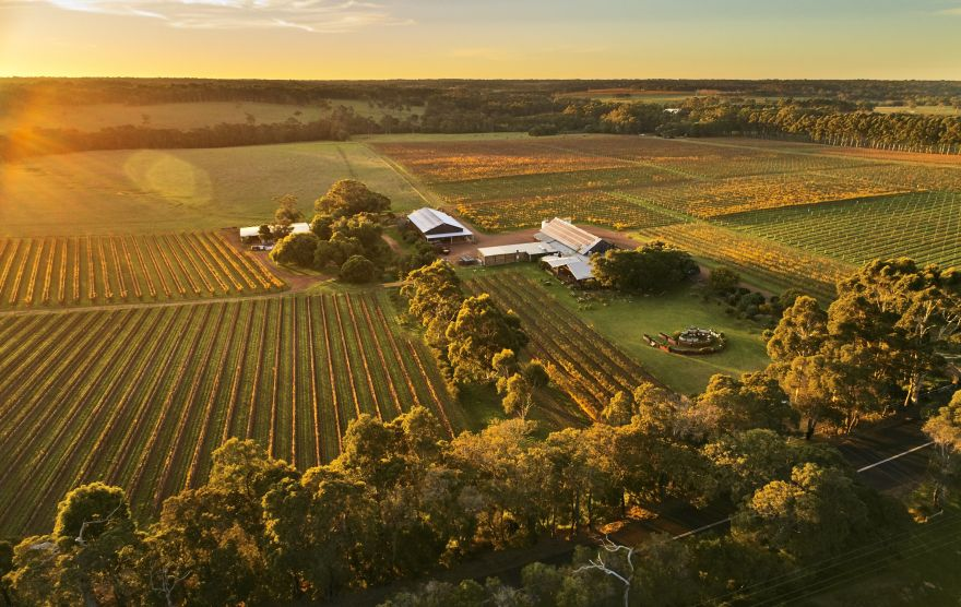 Cullen aerial vineyards RjIrvyag
