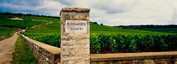 Domaine-de-la-Romane-Conti-10004868